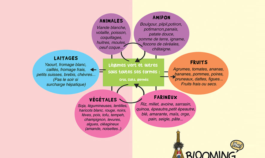 La roue alimentaire