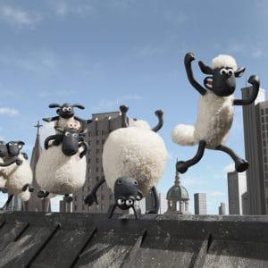 Des moutons défoncés aux cannabis