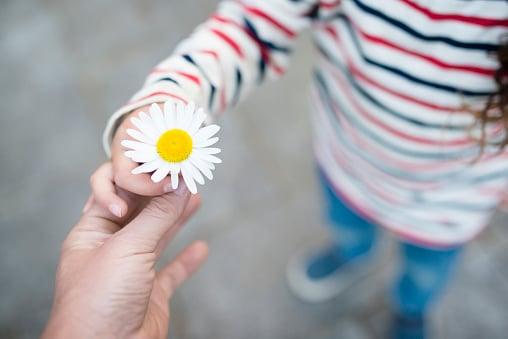pourquoi-la-gentillesse-est-une-force