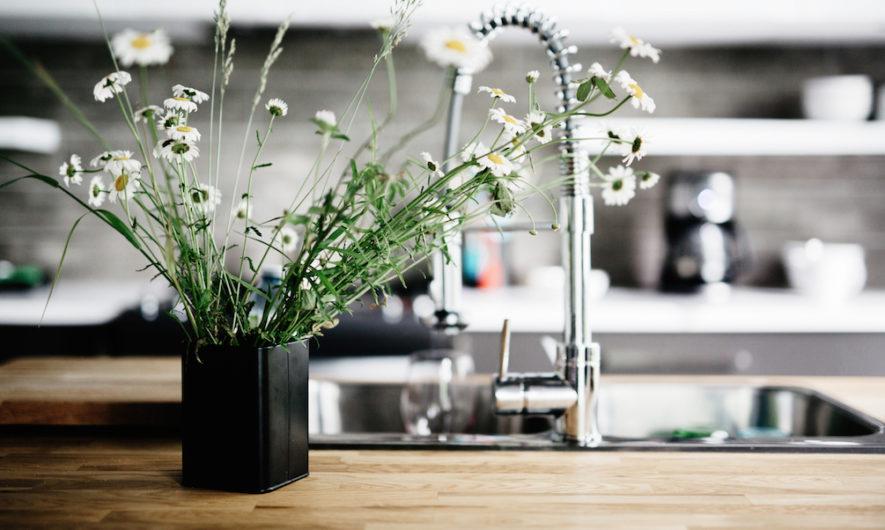 10 astuces pour nettoyer la maison avec vos restes !