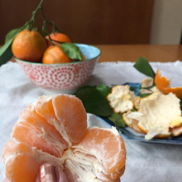 10-astuces-sante-avec-vos-restes-de-cuisine