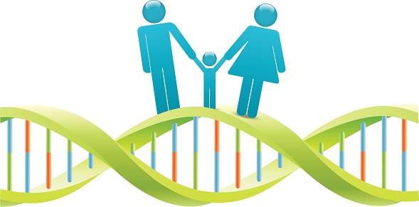 qu-est-ce-que-l-epigenetique-et-a-quoi-cela-sert-il