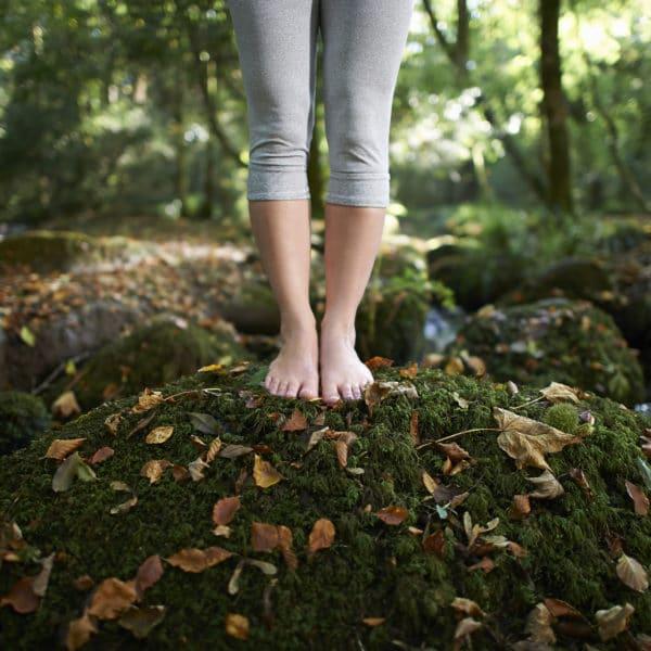 science-pourquoi-la-nature-nous-soigne-et-nous-rend-heureux