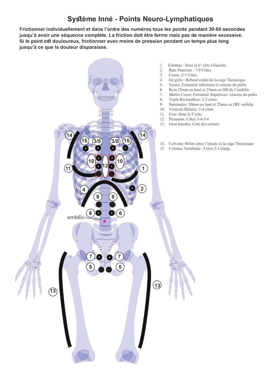 covid-19-comment-renforcer-votre-systeme-immunitaire