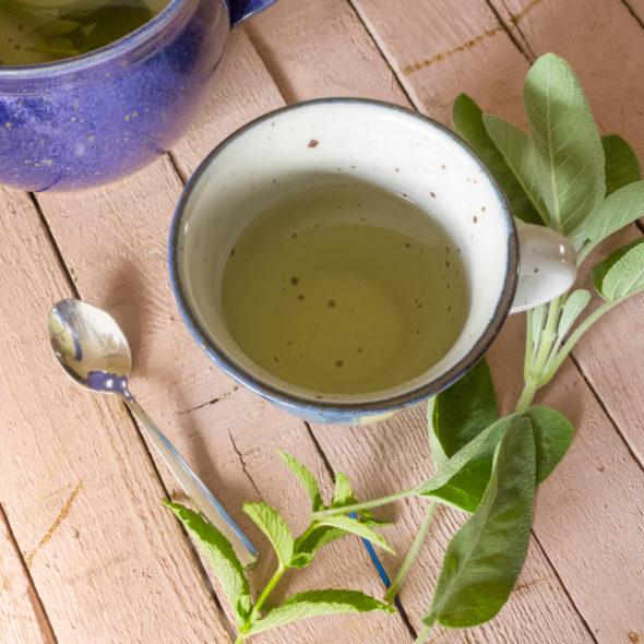 comment-se-soigner-avec-les-plantes-medicinales