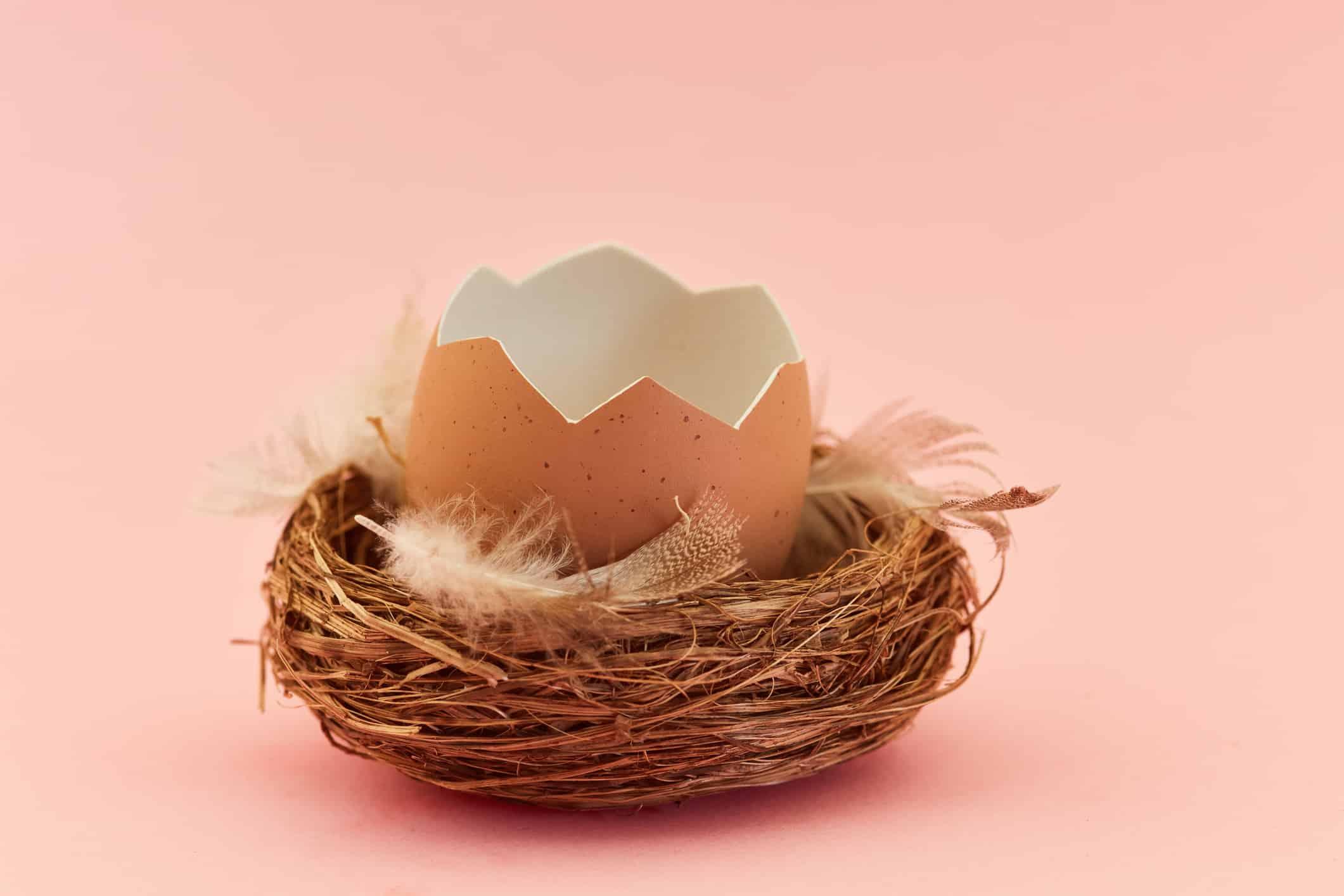 Qu'est-ce que le syndrome du nid vide et comment s'en remettre ?